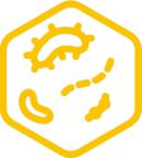 mikrobiolab-icon